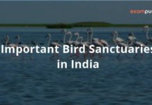 Important Bird Sanctuaries in India